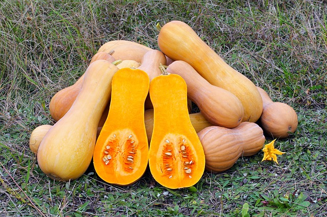 butternut-squash-health-benefits