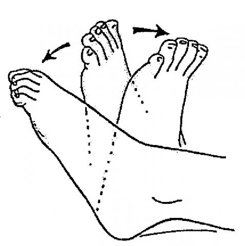 ankle-range-of-motion