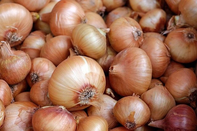 onion reduces bruising