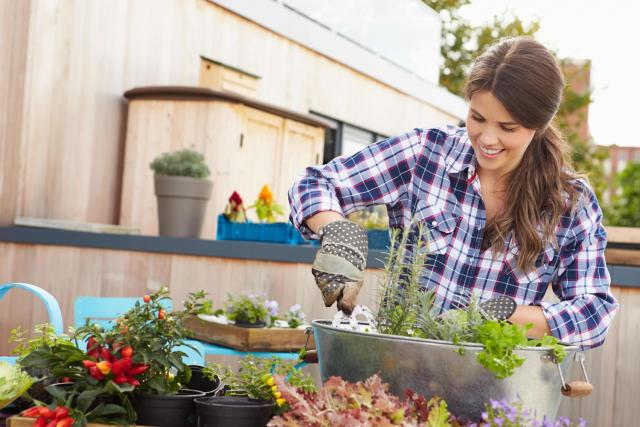 Ditch your lupus and get back to gardening